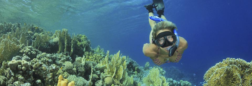 snorkeling 960px