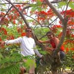 crew in St Croix