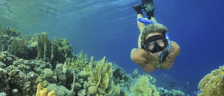 Caribbean Sailing Diving Snorkeling Vacation